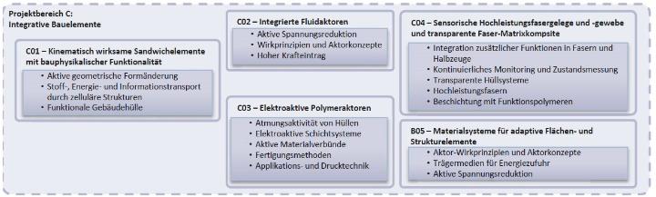 Struktur von Projektbereich C (c)